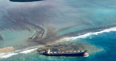 Mauritius declares environmental emergency after mass oil spill from grounded tanker | World News