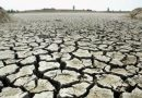 Climate Week: World split on urgency of tackling rising temperatures, global poll shows