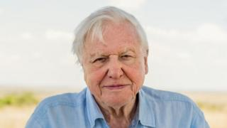 Sir David Attenborough warns world leaders over extinction crisis