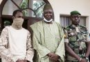 Bah Ndaw: Mali to swear in civilian interim leader after coup
