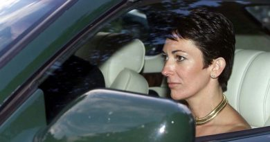 Prince Andrew accuser was a 'fantasist' who spun 'tissue of lies', Ghislaine Maxwell told lawyers   World News
