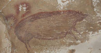 Dated Pig Painting At Leang Tedongnge Credit Maxime Aubert.jpg