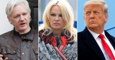 Skynews Julian Assange Pamela Anderson 5241817.jpg