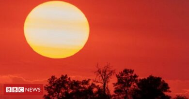 Climate change: Researchers begin discussions on vital report
