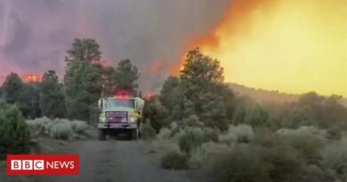 Wildfires spread from California to Nevada