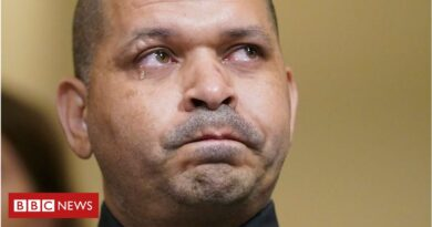 Capitol Hill police officer in tears during testimony