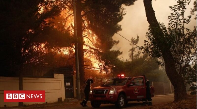 Greece: Forest fire rips through area near Athens