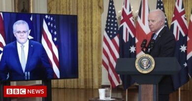 Biden calls Australian PM 'that fellow down under'