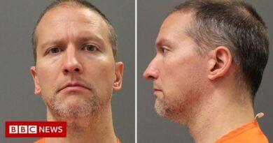 George Floyd murder: Derek Chauvin appeals against conviction