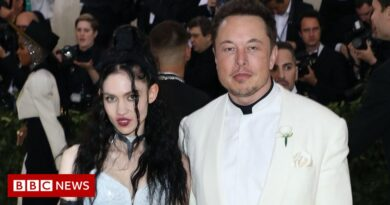 Elon Musk says he and partner Grimes are semi-separated