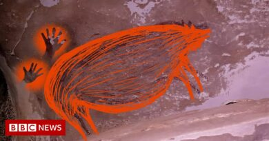 Inside the Indonesian cave where oldest animal art was found