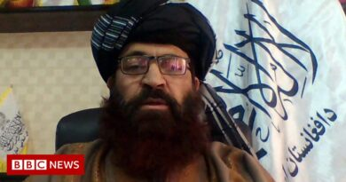 All Afghans have the right to a passport – Taliban