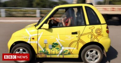 The bumpy road to India's electric car revolution
