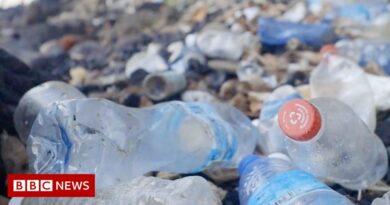 How can Coca-Cola solve its plastic problem?